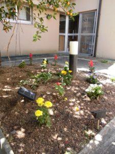 昭和の家・ひだまりの花壇の様子